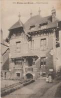 76 BLANGY SUR BRESLE 1916 CHALET NORMAND GROS PLAN ANIME ED ? 1033 ROUSSEURS - Blangy-sur-Bresle