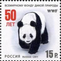 Russia 2011 50th Anniversary Of WWF Panda 1v MNH - W.W.F.