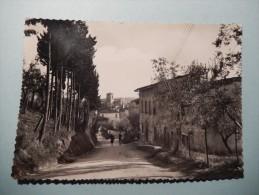 Monterappoli (Empoli) - La Pieve - Empoli