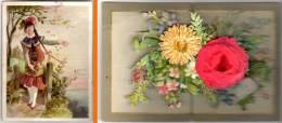 Carte Dépliante, Intérieur Fleurs En 3D, Relief ( Fillette & Fleurs ) - Chromos