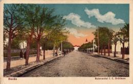 BUZAU - BULEVARDUL I. C. BRATIANU - ANNÉE / YEAR : 1935 (r-297) - Romania