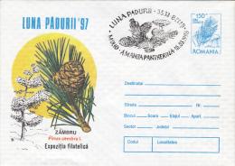 10916- MUSHROOMS, SWISS PINE TREE, COVER STATIONERY, 1997, ROMANIA - Champignons
