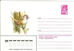 Russia USSR 1980 Fauna Bird Birds Bearded Tit Bartmeise - 1923-1991 USSR