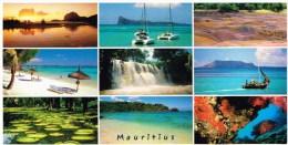 Carte Postale - Maurice  - Couleurs Des Tropiques - Maurice