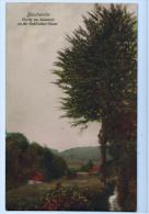 BLEICHERODE : Partie Im Bleichtal An Der Buhl'schen Gasse 1915 - Bleicherode