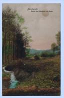 BLEICHERODE : Partie Im Bleichtal Am Bache  1915 - Bleicherode