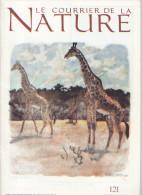 Le Courrier De La Nature N°190 Théodore Monod, Vison D'Europe, Gaspésie, Cerf, Caribou, Orignal 2001, LIVRAISON GRATUITE - Science