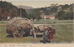 Cpa,uriage,prés De Grenoble,attelage Boeuf,vue Des Pelouses,foin,enfants,agr Iculteurs,isère,38