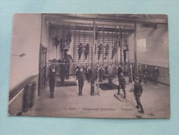 Diesterweg´s Schoolvilla Te Heide ( Turnzaal ) Ferd. Claes 7 - Anno 1919 ( Zie Foto Details ) !! - Kalmthout