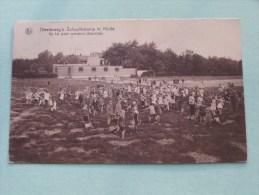 Diesterweg´s Schoolkolonie Te Heide ( Op Het Groot Speelplein / Oostzijde ) Anno 194? ( Zie Foto Details ) !! - Kalmthout
