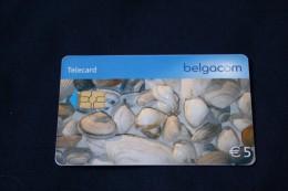 BELGIUM-Shells- Used - Belgique