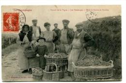 CPA  Champagne  :  Travail De La Vigne  Les Vendanges  Mise Du Raisin En Paniers   1907     VOIR   DESCRIPTIF  §§§ - Autres Communes