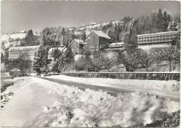 Y1520 Gesamtansicht Landli Am Aegerisee / Viaggiata 1964 - ZG Zoug