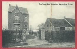 Kapelle-op-den-Bos / Capelle-au-Bois - Viticulture Waeyenberg Frères ( Verso Zien ) - Kapelle-op-den-Bos