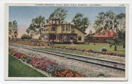 CA ~ Flower Bordered Railroad Tracks SANTA BARBARA California c1910 Postcard
