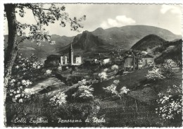 1953, Padova - Colli Euganei - Panorama Di Teolo. - Padova