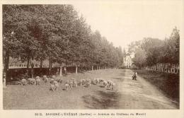 Savigné L Eveque Sarthe 72  Avenue Du Chateau Du Mesnil Moutons - France