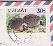 MALAWI Air Mail COVER 40t HEDGEHOG Stamps To GB - Stamps