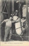CPA (63 - 43 - 42 ?)  AUX MINES     Mineur Descendant Le Cheval Au Fond De La Mine - Pferde