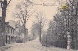 Kortenberg - Mechelse Steenweg - Kortenberg