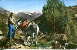 Les Alpes Pittoresques Les Deux Amis - Frankreich