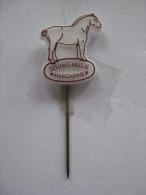 Pin Zeeuws Meisje Margarine (GA6224) - Animaux