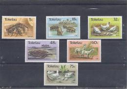 140017235  TOKELAU   YVERT  Nº  137/42  **MNH - Tokelau