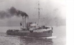 Batiment Militaire Marine Francaise Tourterelle A 688 - Boats