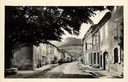 Depts Div.- Tarn - Y423 - Dourgne - Avenue Du Faubourg - Carte Bon Etat - Dourgne