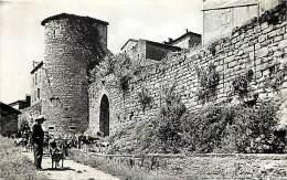 Depts Div.- Tarn - Y418 -  Puycelsi - Porte Et Remparts - Chevre - Chevres - Goat - Goats - Carte Bon Etat - - Frankreich