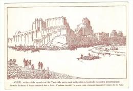 Iraq - Mossul - Assur - Sito Archeologico Unesco. - Iraq