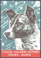 2011 Bulgaria Post Card - Russian SPACE Dog Cosmonaut  LAIKA - Ruimtevaart