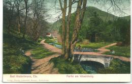 Cpa Niederbronn ,Els. / Partie Am Wasenberg ( Postkarte). - Niederbronn Les Bains