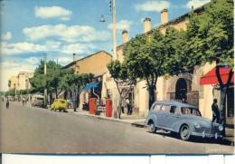 TIZI -OUZOU ( Grande Kabylie( Avenue A. RAMDANE ) - Tizi Ouzou