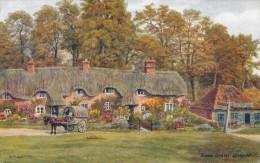 CPSM ROYAUME-UNI - Swan Green Lyndhurst - Autres