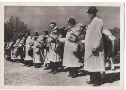 11282 - Slovanska Zemedelskavystava 1948 Praze Predvadiste Prehlidka Skotu Les Vaches Sont Présentées Par Les Marchands - Elevage