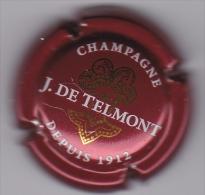 TELMONT N°22a - Champagne
