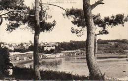 CPA - ILE-aux-MOINES (56) - Le Drenn , Vue à Travers Les Arbres Du Bord De Mer - Ile Aux Moines