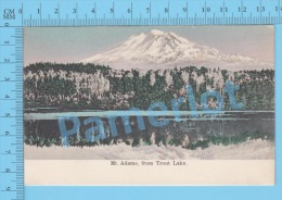 New Hampshire ( Mt Adams From Trout Lake  ) Post Card Carte Postale Recto/Verso - Photographie