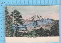 Oregon USA ( Mt Hood  ) Post Card Carte Postale Recto/Verso - Photographie