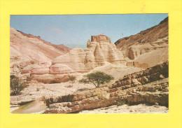 Postcard - Israel, Zohar-Citadel      (17897) - Israel