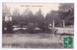 (RECTO / VERSO) SAINT JUNIEN EN 1913 - LE BOIS AUX BOEUFS - BEAU CACHET