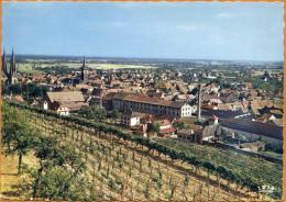 67 / OBERNAI - Vue Générale - Vignes, Cheminées, églises... (années 60) - Obernai
