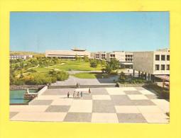 Postcard - Israel, Jerusalem     (V 23624) - Israele