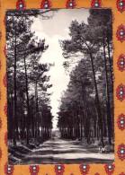 1 Cp La Route Landaise - France