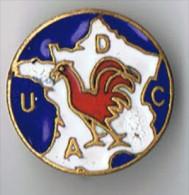 Broche  émaillée   20 Mm      Drago  Paris    Coq France - Spille