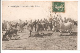 Algérie - AIN BESSEM - Un Coin Du Marché Aux Bestiaux - Métiers