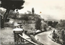Y1626 Recanati (Macerata) - Il Colle Dell'Infinito / Non Viaggiata - Otras Ciudades