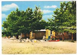 Mol - Camping (Zilverstrand) - Mol