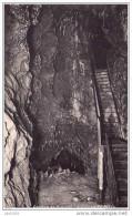DINANT ..-- Grotte . La Grande Allée . - Dinant